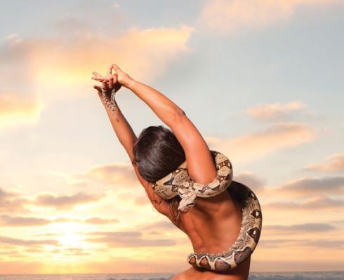 snaked-yoga_NOV
